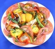 πιάτο Ινδός Στοκ φωτογραφία με δικαίωμα ελεύθερης χρήσης