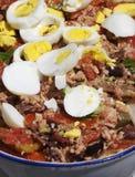 πιάτο ιταλικά caponata στοκ εικόνα