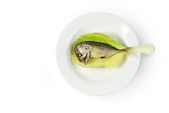 Πιάτο και κουτάλι Στοκ Εικόνα