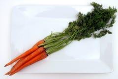 πιάτο καρότων Στοκ Εικόνες