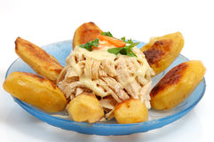 πιάτο κοτόπουλου Στοκ φωτογραφία με δικαίωμα ελεύθερης χρήσης