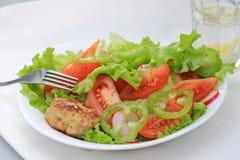 πιάτο μεσημεριανού γεύματος Στοκ εικόνα με δικαίωμα ελεύθερης χρήσης