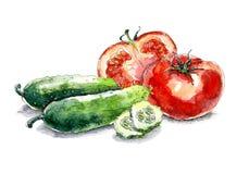 Πιάτο με τις διαφορετικές ποικιλίες των κολοκυθών δ διανυσματική απεικόνιση