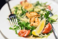 Πιάτο με τις μικτές γαρίδες salat Πιάτο με τις γαρίδες, το arugula, την ντομάτα και το τυρί εύγευστο υγιές γεύμα Στοκ Εικόνα