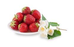 Πιάτο με τις φράουλες και jasmine τον κλάδο. Στοκ φωτογραφία με δικαίωμα ελεύθερης χρήσης