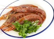 Πιάτο με τις φρέσκες γαρίδες Στοκ εικόνα με δικαίωμα ελεύθερης χρήσης
