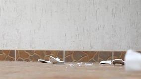 Πιάτο που χτυπά το έδαφος απόθεμα βίντεο