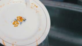 Πιάτο πλύσης γυναικών στο νεροχύτη κουζινών απόθεμα βίντεο