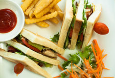 Πιάτο σάντουιτς με τις τηγανιτές πατάτες, sause και τα λαχανικά Στοκ εικόνες με δικαίωμα ελεύθερης χρήσης