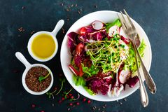 Πιάτο σαλάτας φρέσκων λαχανικών των ντοματών, του ιταλικού μίγματος, του πιπεριού, του ραδικιού, των πράσινων νεαρών βλαστών και  Στοκ φωτογραφίες με δικαίωμα ελεύθερης χρήσης