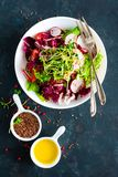 Πιάτο σαλάτας φρέσκων λαχανικών των ντοματών, του ιταλικού μίγματος, του πιπεριού, του ραδικιού, των πράσινων νεαρών βλαστών και  Στοκ φωτογραφία με δικαίωμα ελεύθερης χρήσης