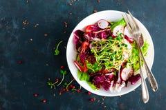 Πιάτο σαλάτας φρέσκων λαχανικών των ντοματών, του ιταλικού μίγματος, του πιπεριού, του ραδικιού, των πράσινων νεαρών βλαστών και  Στοκ Εικόνες