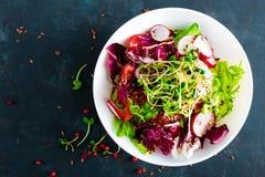 Πιάτο σαλάτας φρέσκων λαχανικών των ντοματών, του ιταλικού μίγματος, του πιπεριού, του ραδικιού, των πράσινων νεαρών βλαστών και  Στοκ εικόνες με δικαίωμα ελεύθερης χρήσης