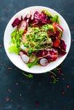 Πιάτο σαλάτας φρέσκων λαχανικών των ντοματών, του ιταλικού μίγματος, του πιπεριού, του ραδικιού, των πράσινων νεαρών βλαστών και  Στοκ Εικόνα