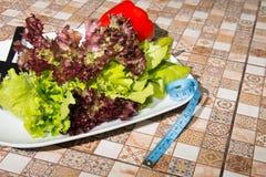 Πιάτο της σαλάτας Διατροφή και ένας υγιεινός τρόπος ζωής Στοκ φωτογραφία με δικαίωμα ελεύθερης χρήσης