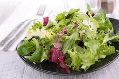 Πιάτο της σαλάτας στοκ φωτογραφία με δικαίωμα ελεύθερης χρήσης