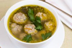 Πιάτο της φυτικής σούπας με τα κεφτή Στοκ Εικόνα