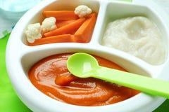 Πιάτο τμημάτων με τις παιδικές τροφές στοκ φωτογραφία
