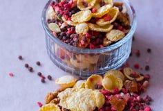 Πιάτο του σπιτικού muesli με τα δημητριακά, πάγωμα - ξηρά φράουλα, ξύλα καρυδιάς, σφαίρες σοκολάτας, σπόροι κολοκύθας Στοκ Φωτογραφία