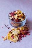 Πιάτο του σπιτικού muesli με τα δημητριακά, πάγωμα - ξηρά φράουλα, ξύλα καρυδιάς, σφαίρες σοκολάτας, σπόροι κολοκύθας Στοκ Φωτογραφίες