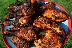 Πιάτο του ψημένου στη σχάρα κοτόπουλου 3 Στοκ Εικόνες