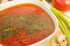 Πιάτο του borscht με τα πράσινα, σούπα στοκ εικόνες