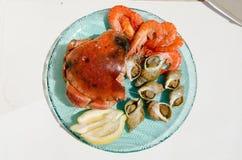 Πιάτο των θαλασσινών Στοκ Εικόνα