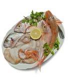 Πιάτο των φρέσκων ψαριών Στοκ Εικόνα