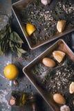 Πιάτο ψησίματος με τους ακατέργαστους πλευρονήκτες και καρύκευμα στην κατακόρυφο υποβάθρου πετρών Στοκ Εικόνες
