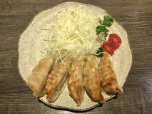 Πιάτο Gyoza ασιατικά τρόφιμα Στοκ φωτογραφία με δικαίωμα ελεύθερης χρήσης