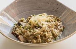 Πιάτο Risotto με τα μανιτάρια στοκ εικόνα