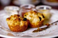 πιάτο scones Στοκ φωτογραφίες με δικαίωμα ελεύθερης χρήσης