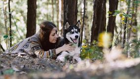Πιθανή νέα γυναίκα στο δάσος που εναπόκειται στο όμορφο σκυλί και που έχει τη διασκέδαση απόθεμα βίντεο
