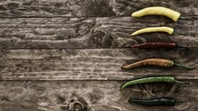 Πικάντικα πιπέρια τσίλι Στοκ Εικόνες
