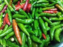 Πικάντικα πιπέρια τσίλι Στοκ φωτογραφίες με δικαίωμα ελεύθερης χρήσης