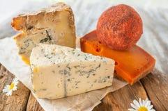 Πικάντικα τυριά λιχουδιών των διαφορετικών ποικιλιών Κόκκινο τυρί Cheddar, μπλε Dor, Stilton, λόφος Belper όμορφο κατασκευασμένο  στοκ εικόνες με δικαίωμα ελεύθερης χρήσης