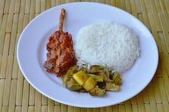 Πικάντικα ψάρια και φυτικό κάρρυ με το ψημένο στη σχάρα κοτόπουλο στο πιάτο Στοκ Φωτογραφία