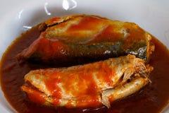Πικάντικες σαρδέλλες στα κονσερβοποιημένα ψάρια σάλτσας ντοματών Στοκ Εικόνα