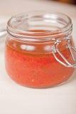 πικάντικη ντομάτα σάλτσας Στοκ εικόνες με δικαίωμα ελεύθερης χρήσης
