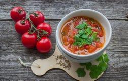 πικάντικη ντομάτα σούπας Στοκ εικόνα με δικαίωμα ελεύθερης χρήσης