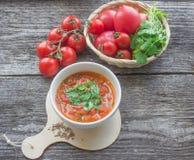 πικάντικη ντομάτα σούπας Στοκ Φωτογραφία