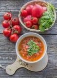 πικάντικη ντομάτα σούπας Στοκ φωτογραφία με δικαίωμα ελεύθερης χρήσης