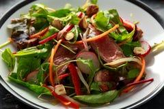 Πικάντικη σαλάτα βόειου κρέατος με τα καρότα, το ραδίκι, τους νεαρούς βλαστούς φασολιών, τα τσίλι, τα καρύδια και το πράσινο μίγμ στοκ εικόνες με δικαίωμα ελεύθερης χρήσης