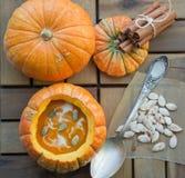 Πικάντικη σούπα κολοκύθας Στοκ Εικόνα