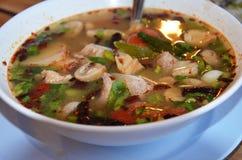 Πικάντικη σούπα χοιρινού κρέατος καρδάμωμων στοκ φωτογραφία