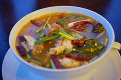Πικάντικη ταϊλανδική σούπα Στοκ εικόνες με δικαίωμα ελεύθερης χρήσης