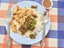 Πικάντικη τηγανισμένη σαλάτα ρυζιού, βόειου κρέατος και κοτόπουλου στοκ φωτογραφία με δικαίωμα ελεύθερης χρήσης