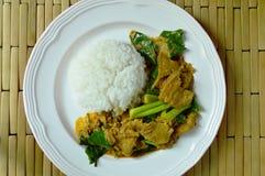 Πικάντικος ανακατώστε το τηγανισμένο κινεζικό κατσαρό λάχανο με το χοιρινό κρέας μπριζολών και streaky στο κάρρυ στο ρύζι Στοκ Φωτογραφίες
