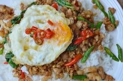 Πικάντικος ανακατώστε το τηγανισμένο χοιρινό κρέας μπριζολών με το αυγό καλύμματος φύλλων βασιλικού στο ρύζι Στοκ Εικόνες