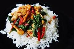 Πικάντικος βασιλικός κοτόπουλου με το ρύζι στοκ εικόνες με δικαίωμα ελεύθερης χρήσης